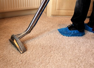 Ashfield Carpet Cleaning Service