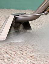 Carpet Steam Cleaning Hunters Hill