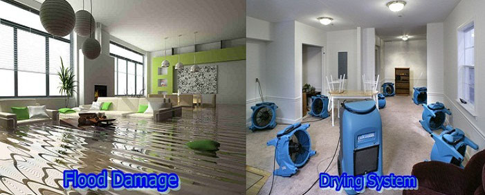 Flood Water Damage Stanhope Gardens