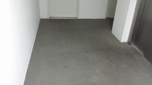carpet-after-6